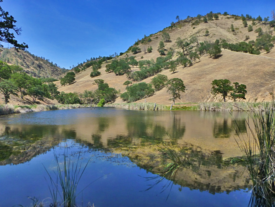 Paradise Lake - located in the Orestimba Wilderness, Henry Coe State Park
